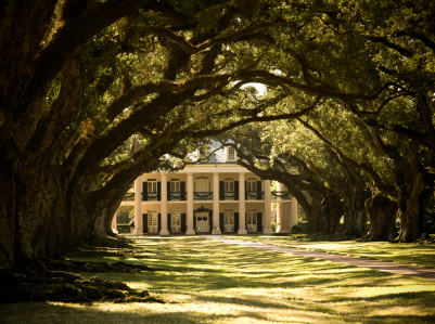 Old Plantation in Louisiana